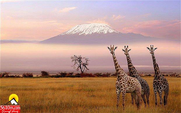 kilimanjaro_1840473b