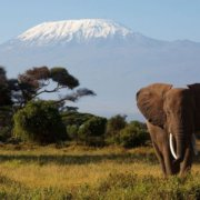 mount-kilimanjaro-tanzania